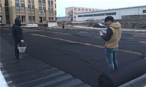 巴彥淖爾排水板|排水板廠家|排水板