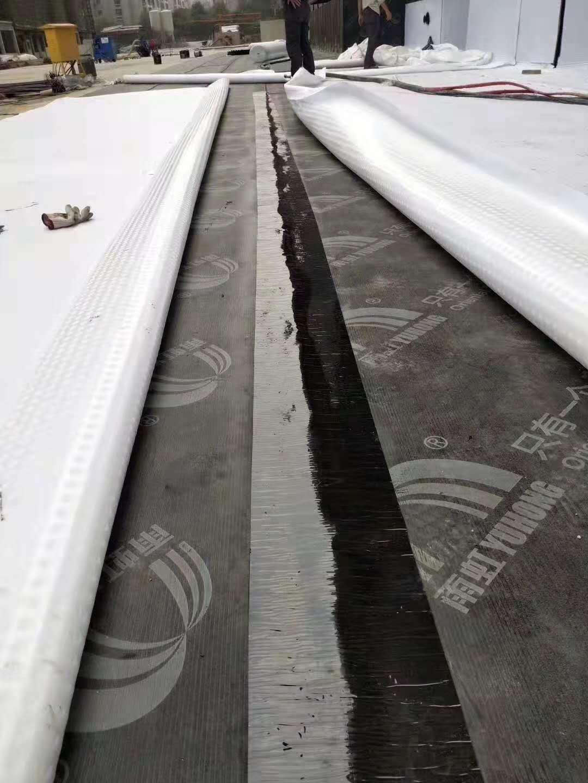 林芝排水板|排水板批發|排水板