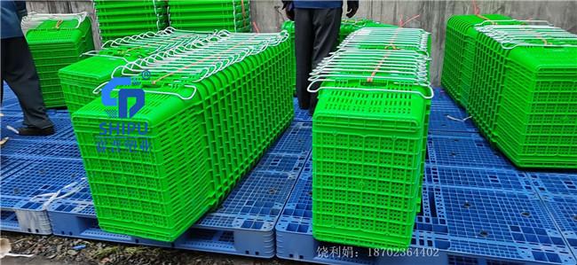 万盛塑料周转萝铁耳蔬菜运输箩框