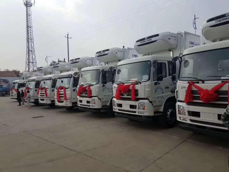 上海到济南冷链运输 上海到济南冷链运输时效