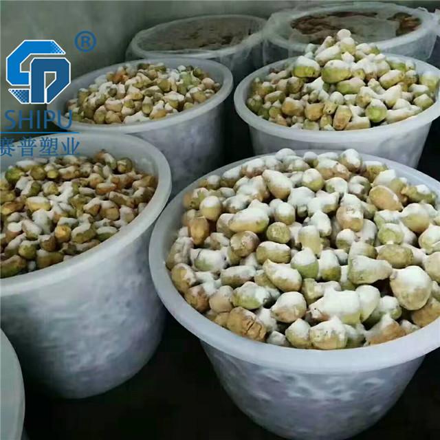 赛普塑业70升塑料圆桶辣椒腌制圆桶