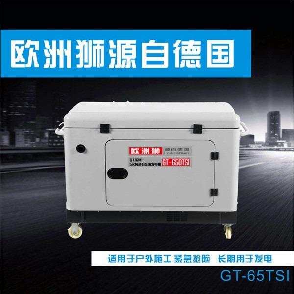 8KW柴油发电机带雾炮机